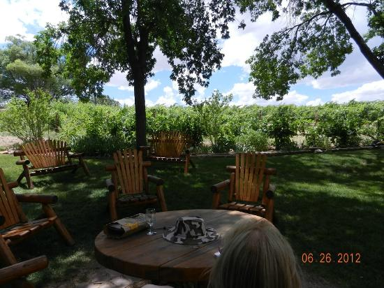 ‪‪Carlson Vineyards Winery & Tasting Room‬: Patio for your own lunch - stop for food---