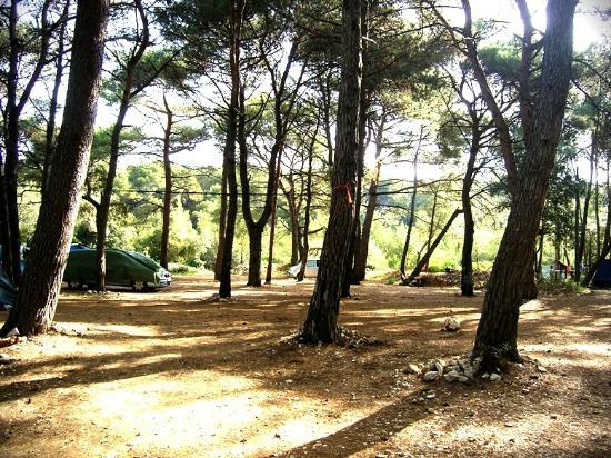 Camping Cikat: camp Čikat