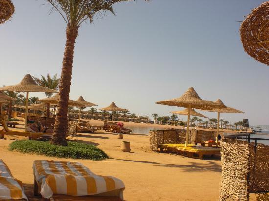 Desert Rose Resort: beach