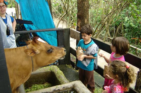 Hotel Fazenda Campo dos Sonhos: Tem muitos animais e o contato é fácil.
