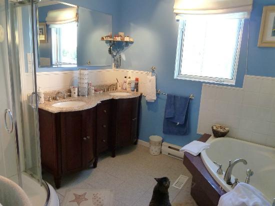 Aux Saveurs Du Lac : Salle de bain nickel!!!
