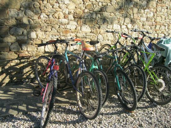 Agriturismo Acquacalda: le biciclette dell'agriturismo
