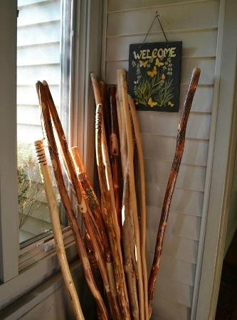 Hawkesdene House: Walking sticks at Hawkesdene.