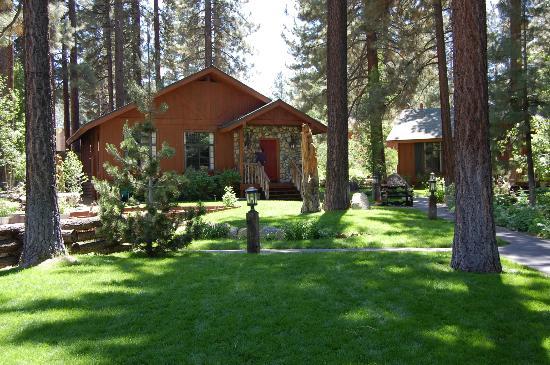 Black Bear Inn : One of the cabins