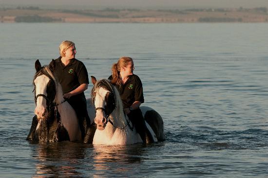 Belfairs Riding School: Beach Ride, Leigh on Sea, 2011