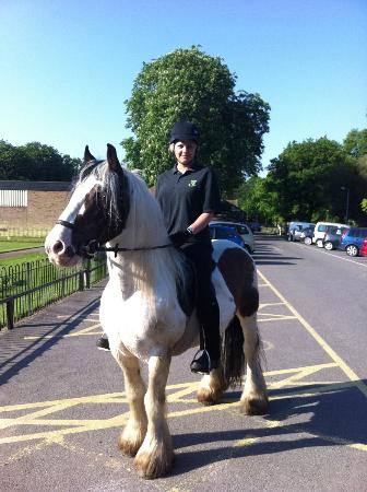 Belfairs Riding School: Sunday morning hack