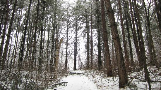 Turning Waters Bed, Breakfast and Adventure: Hiking in Bluff Country