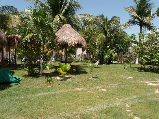 Golden Paradise Camping Area : The yard - campground