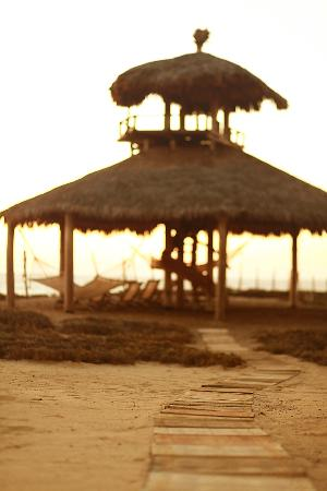 Villa Santa Cruz: Beachfront Palapa (Great for Whale Watching)