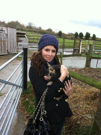 Harry Tuffins Country Park: sister holding a kune kune piglet