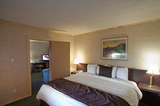 Hotel Plaza Juarez: Contamos con Internet Inalambrico de Alta Velocidad