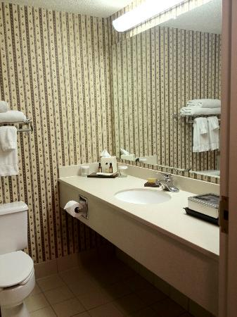 Cincinnati Marriott Northeast : Sink, toilet