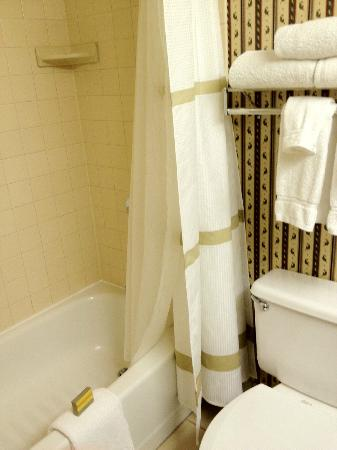 Cincinnati Marriott Northeast: Tub and toilet - very clean