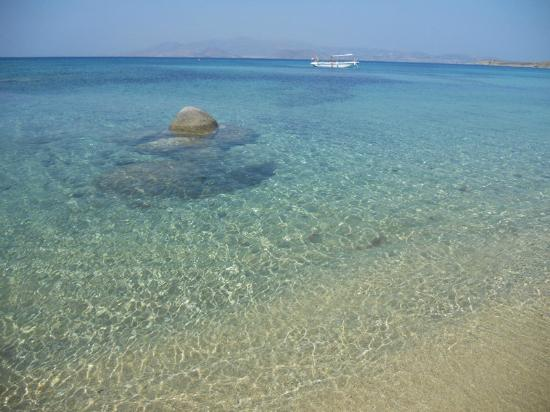 Ξενοδοχείο Άγιος Προκόπιος: Agios Prokopios beach, 2min. walking from the hotel