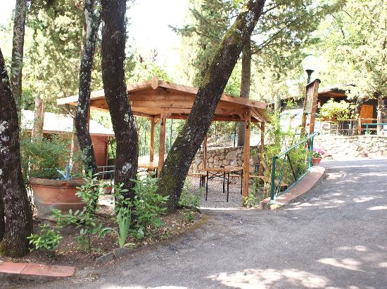 Camping Village Panoramico Fiesole: L'espace diner/repas/reunion de groupe/Meeting/dining are for groups