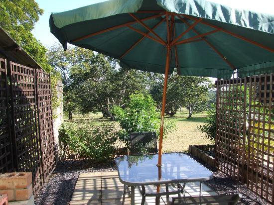 Macadamia Lodge: The Patio