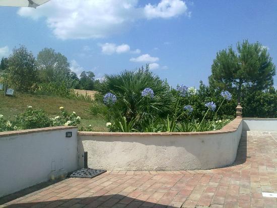 Il Casale Degli Incanti: Alcune piante del giardino