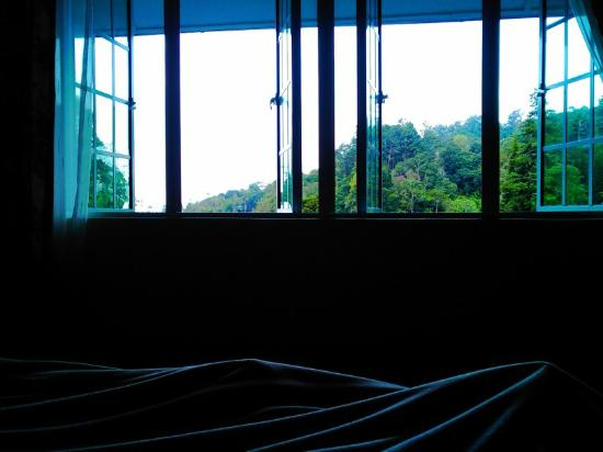 Puncak Inn: bed view