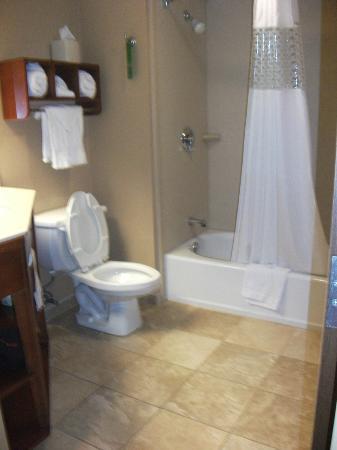 Hampton Inn Pittsburgh - Mcknight Rd. : Clean Bathroom..no complaints here!