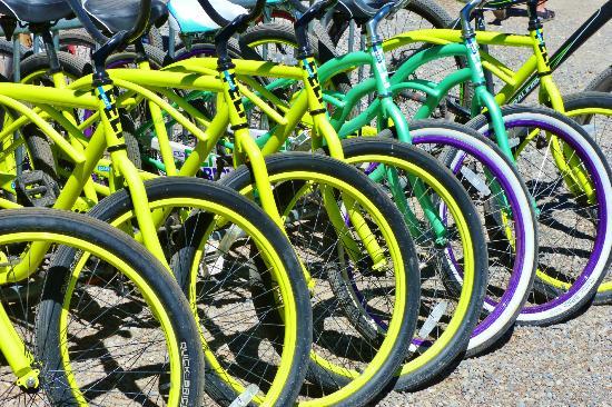 Redfish Outlet Lake : Bike rental