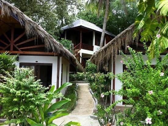 Chaweng Cove Beach Resort : so natural