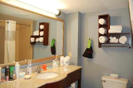 Hampton Inn Kansas City Lee's Summit: Our bathroom