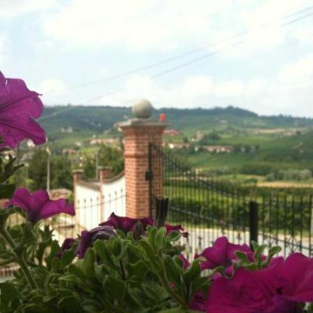 Vineria del Barolo : La vista dalla porta d'ingresso verso La Morra