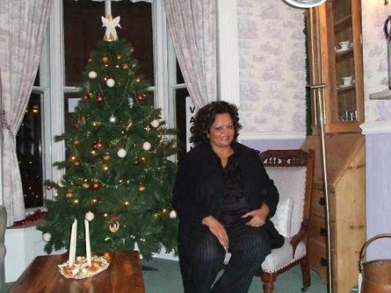 Holmwood House: living room with christmas tree