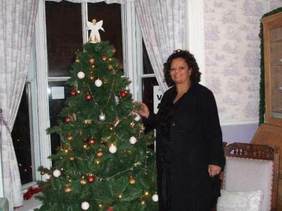 Holmwood House: living room area with Christmas tree