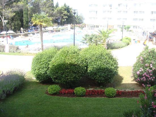 Aminess Laguna Hotel: Piscina