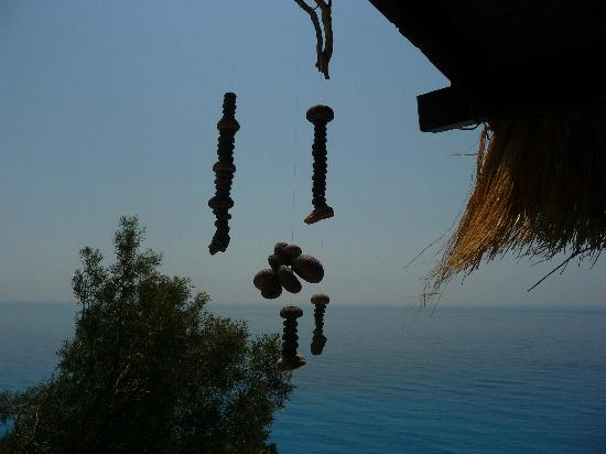 Villa Olga Hotel Apartments & Studios: Lefkada