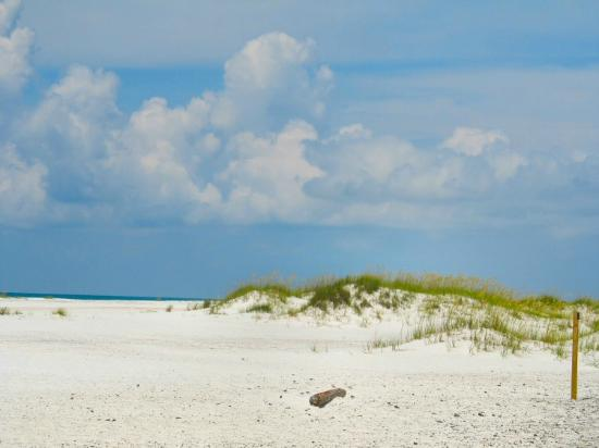 Gulf Islands National Seashore - Florida District: Perfect white sand