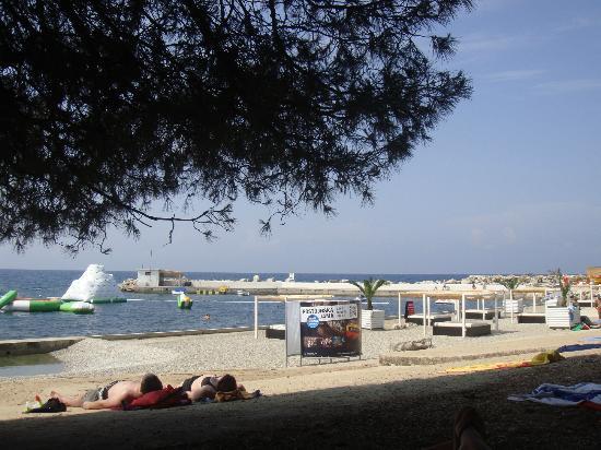 Aminess Laguna Hotel: Spiaggia