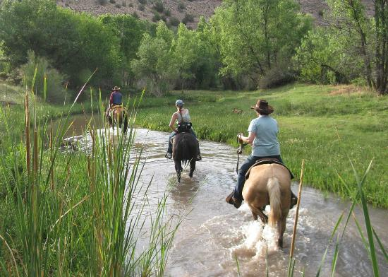 Cowboy Way Adventures: Riding in the Verde River up in Prescott