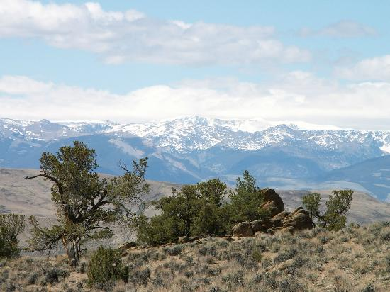 Dubois, WY: Snow capped Absaroka Mountains