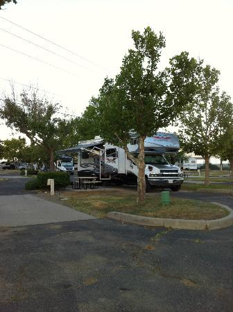 American RV Resort: RV site