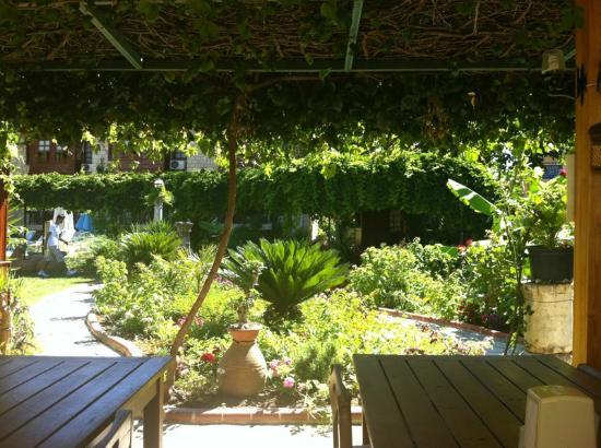 Hotel Lale Park: The garden