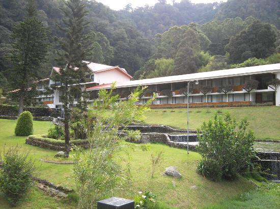 Hotel Bambito Resort: Garden