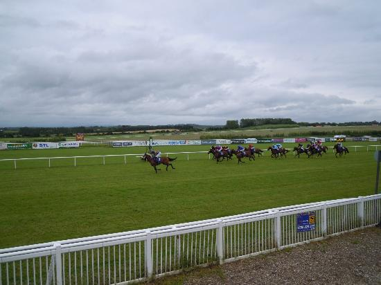 Limerick Racecourse: During a race!