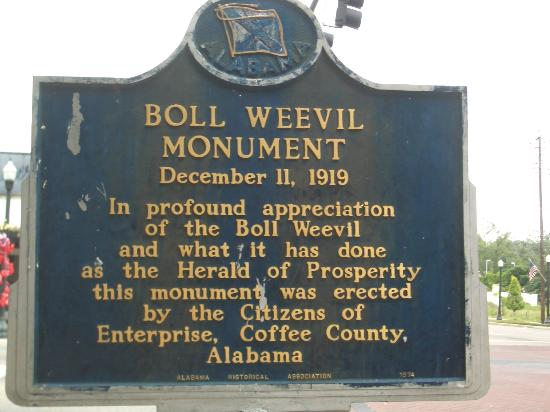 Boll Weevil Monument: The short version of the story