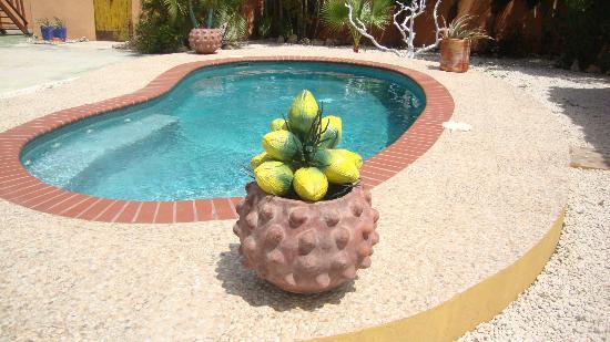 Villa Punta Salina: filename__dsc03721_jpg_thumbnail0_jpg