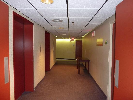 Dartmouth Oceanview Hotel: Hallway and elevators.