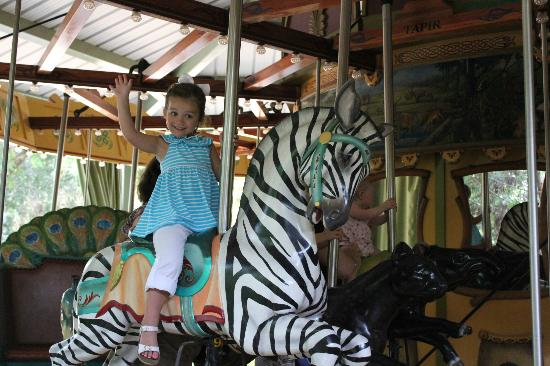 Jackson, MS: My daughter on the carousel. They have all different animals to ride and they move up and down.