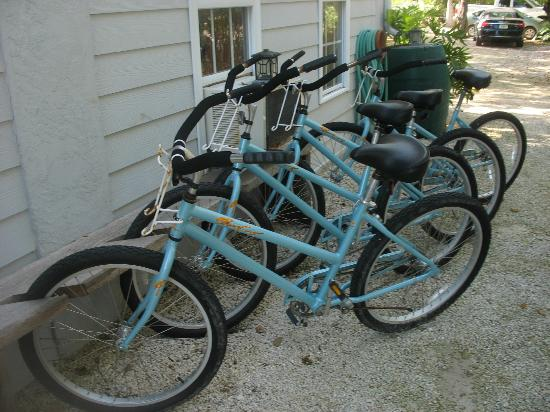Deer Run Bed & Breakfast: Cruiser Bikes (free for guests)