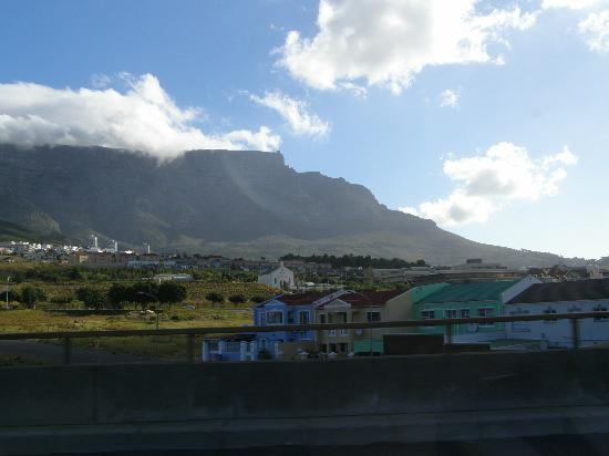 Cape Splendour Day Tours: Cape Town and Table Mtn