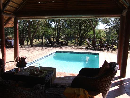 Thula Thula Exclusive Private Game Reserve and Safari Lodge: The Pool