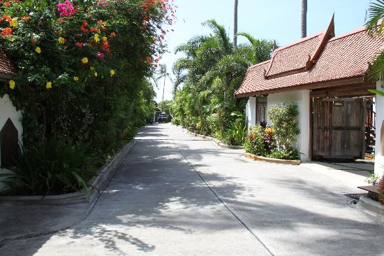 Shiva Samui: The path out the front of our villa to the beach or reception