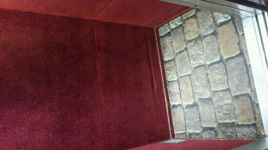Best Western Tour Eiffel Invalides : the lift.... carpet all around and tiny