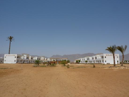 Swisscare Nuweiba Resort Hotel: Looking back on the hotel from the beach