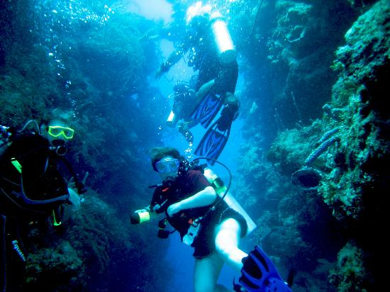 Turneffe Island, Belize: Divers